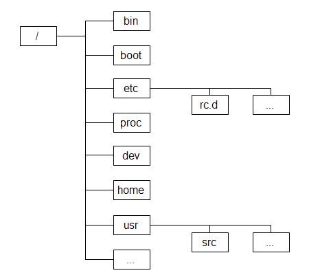 Linux 系统的目录结构